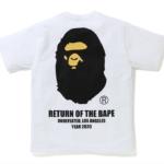 bape-undftd-ape-head-tee