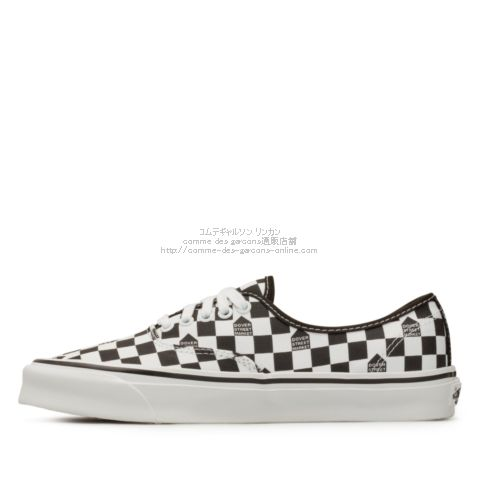 dsm-vans-2021-authentic